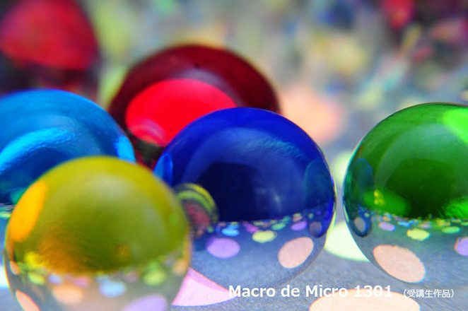Macro de Micro 1301